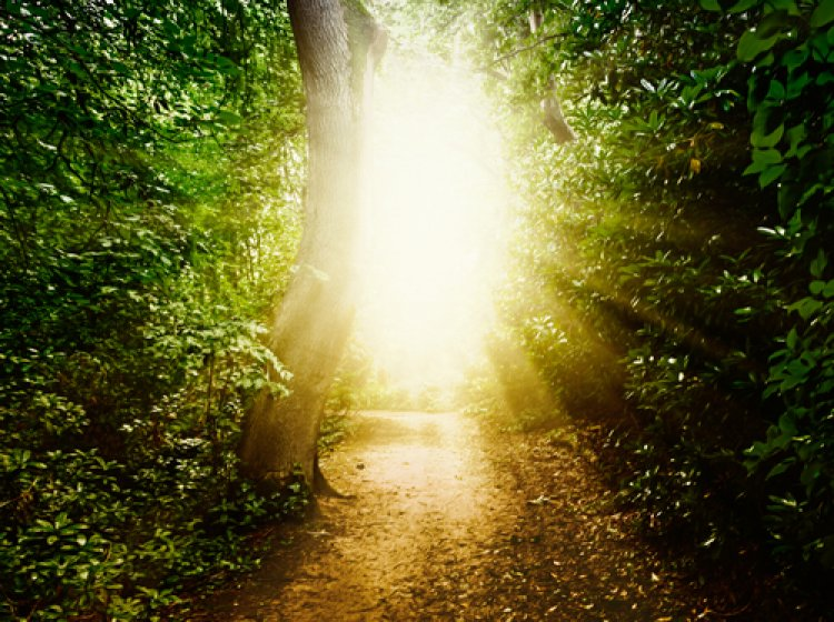 Life After Life - 1: The Phenomena of Near Death Experiences (NDE)
