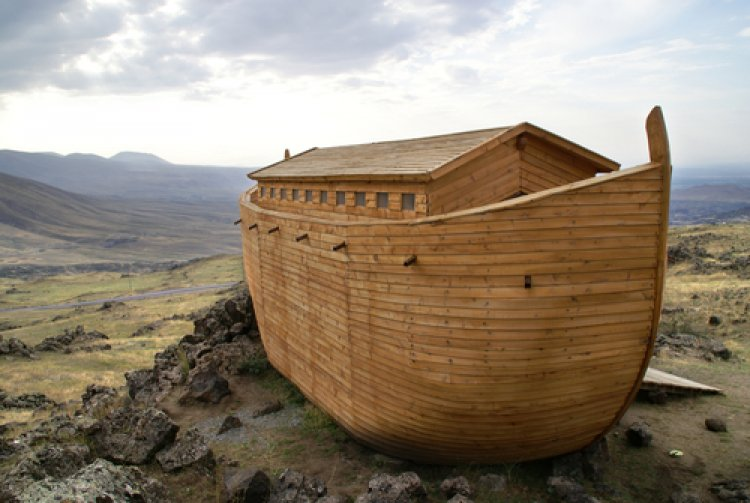 Questions and Answers about Noah and the Flood