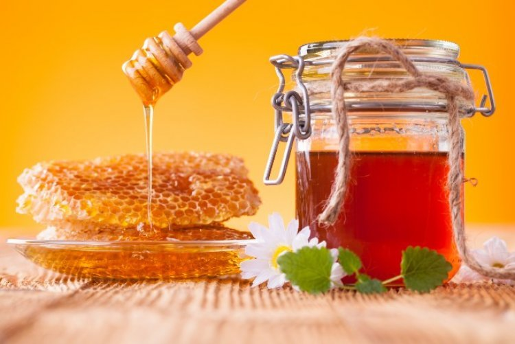 Watch: How is Honey Made?