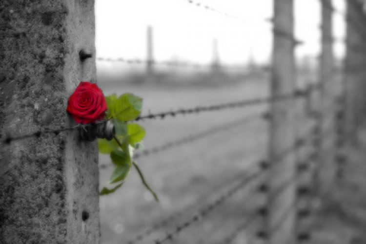 How Five Girls Fulfilled the Commandment of Sukkah in Auschwitz