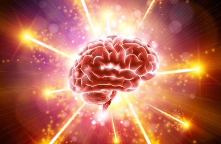 15 Astounding Facts About the Brain
