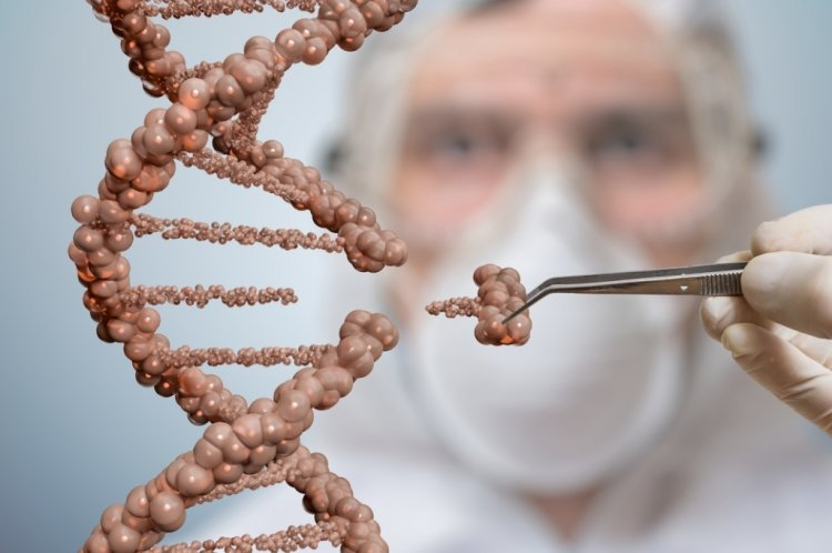 Successful Gene Splicing May End Many Genetic Diseases