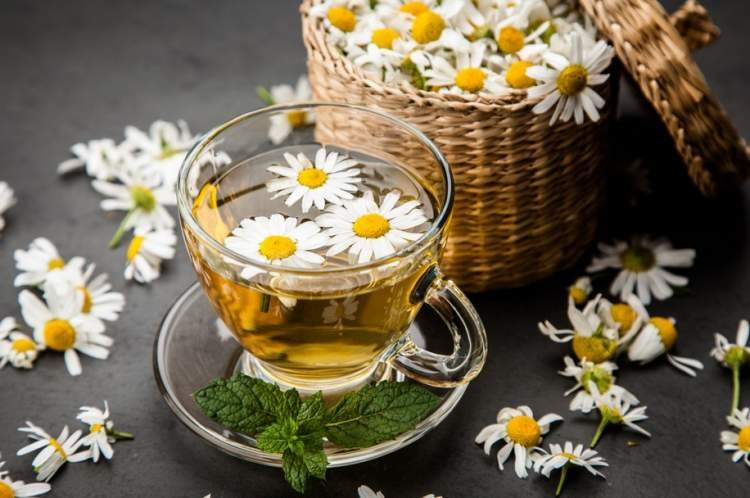 Chamomile for Eczema? It Works!