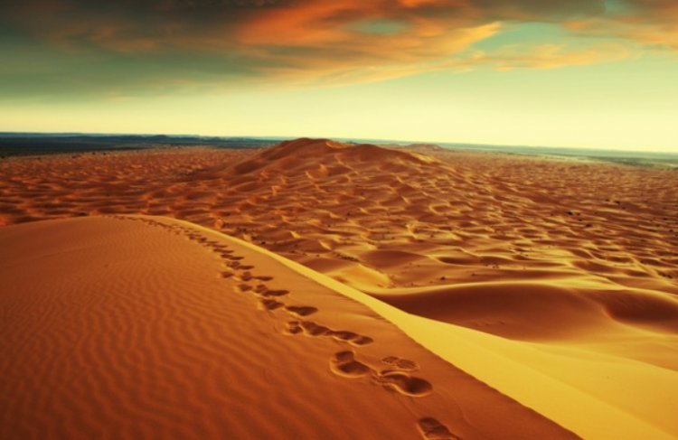 The Israelites Journeys in the Desert