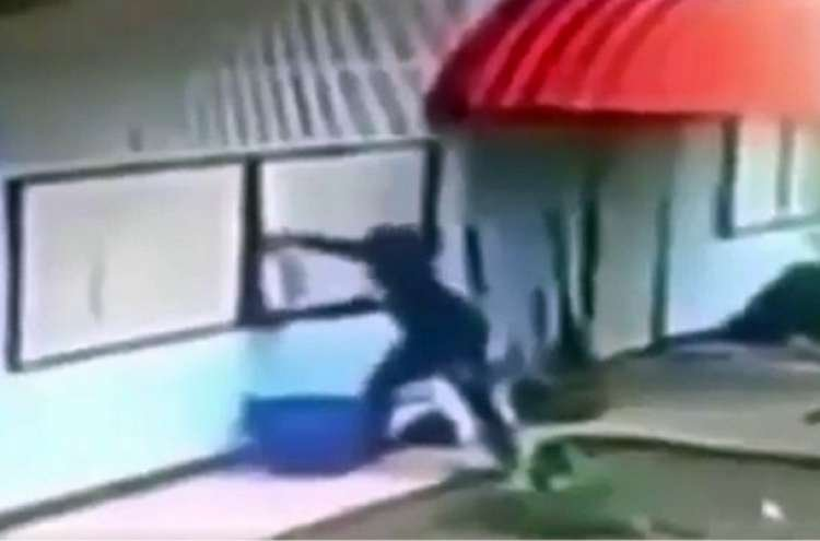 Watch: The Dumbest Thief Ever