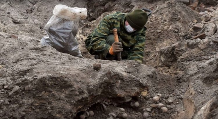 Holocaust Mass Grave Unearthed in Belarus