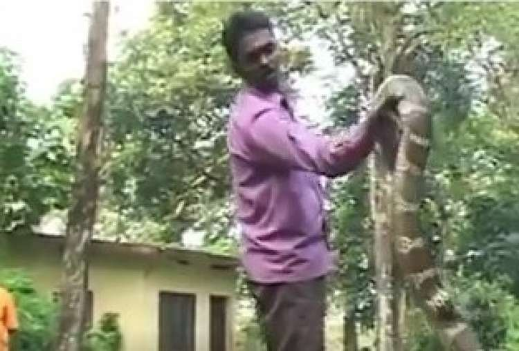 Frightening Snake Catching Methods - Only in India