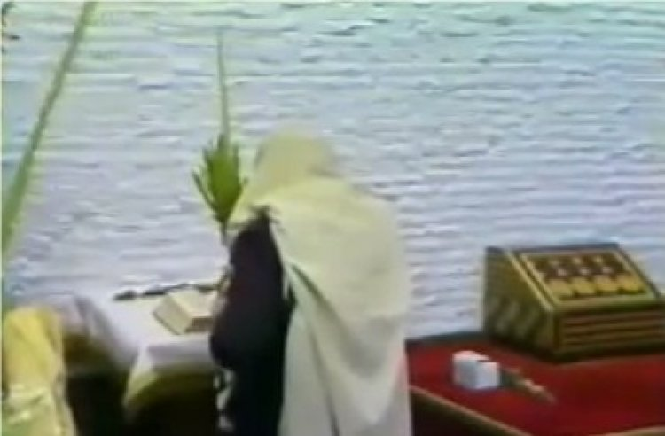 Rare Footage of the Lubavitcher Rebbe Waving the Four Species - Watch