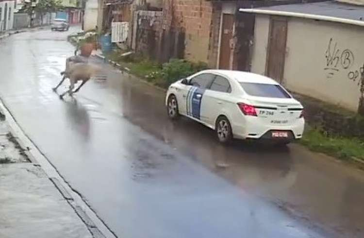 This is Why it's so Important to Drive Slowly on Wet Roads - Watch