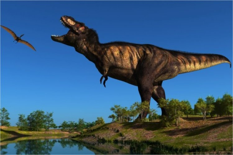 Dinosaur Eggs Prove: Dinosaurs Could Not Have Lived Millions of Years Ago