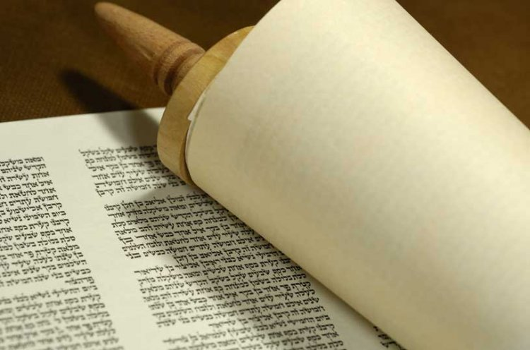 Bamidbar – The Importance of Teaching Torah